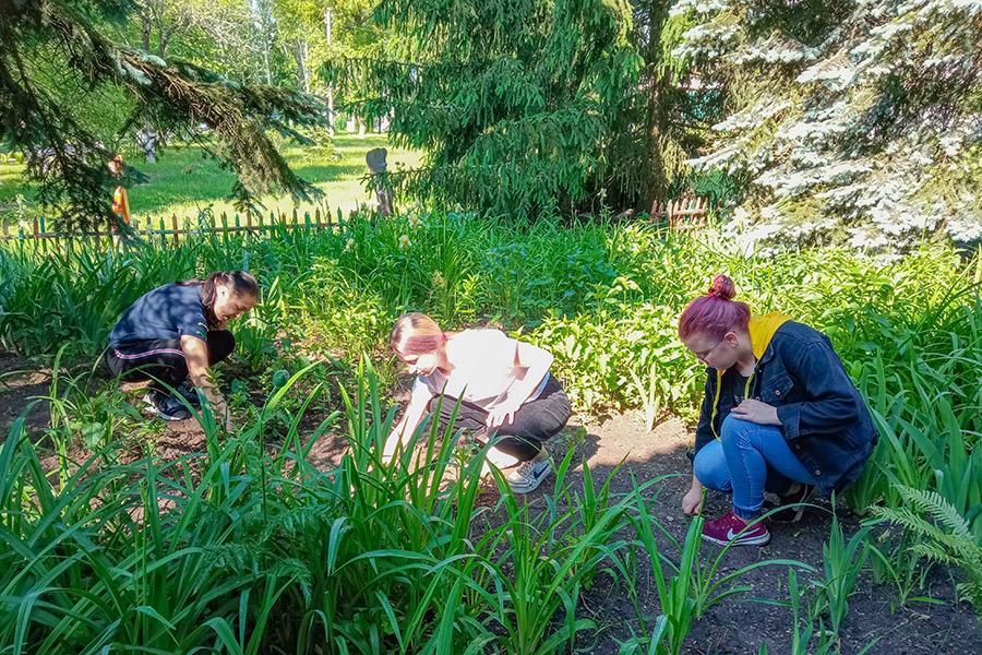 Школьники из Клинцовского района получают первый трудовой опыт