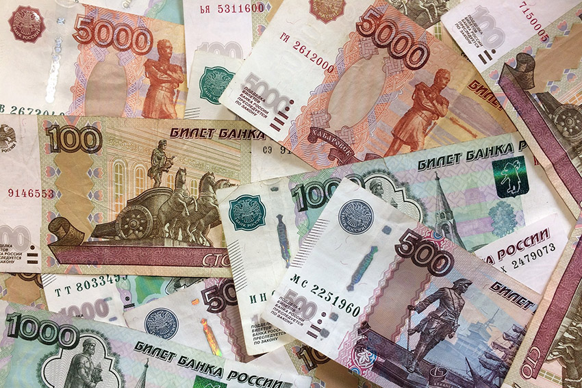 Полицейские из Клинцов вернули старушке сбережения, которые у нее похитила молодая женщина из Коржовки-Голубовки