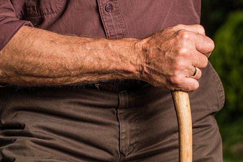 Дедушка из под Суража оказался не промах: ему хватило взгляда, чтобы понять, что в вещах приезжих есть чем поживиться