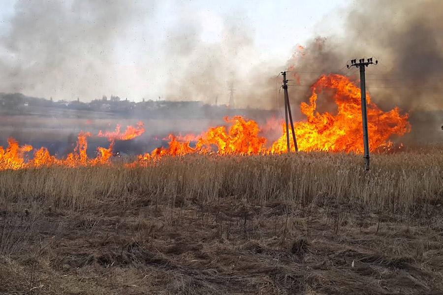 С начала года в Клинцах и Клинцовском районе произошло 188 пожаров